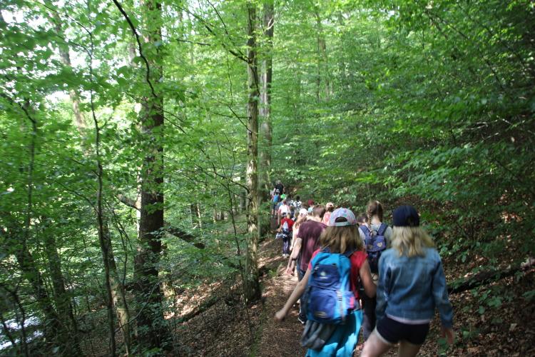 Waldwanderung Kinderfreizeit Neue Mühle