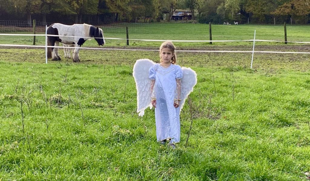 Engel auf Wiese mit Pferd